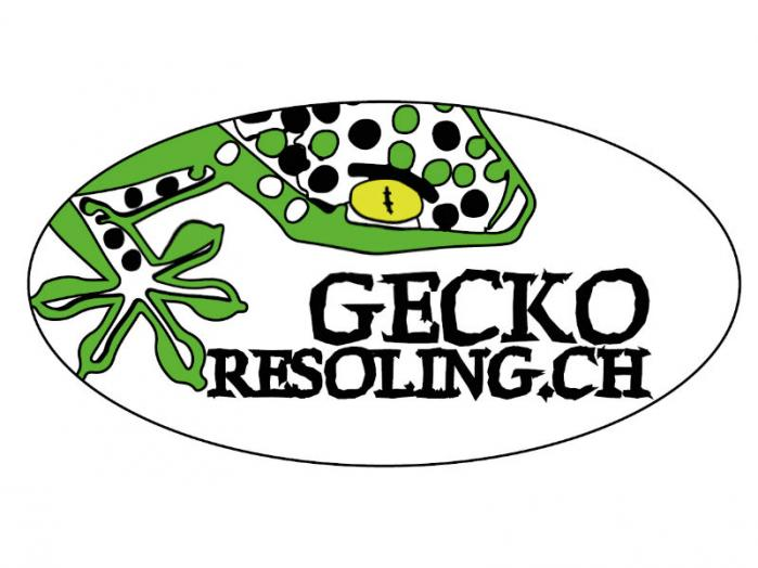 Gecko Resoling